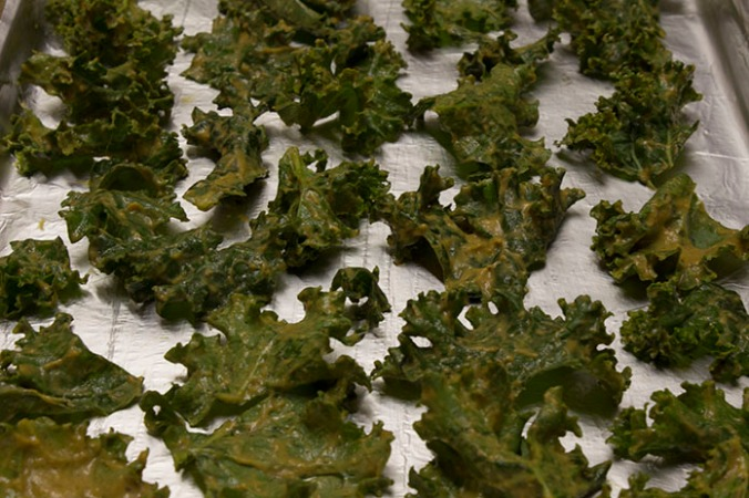 Nut Free Kale Chips Coated